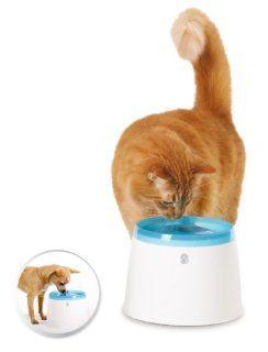 Catit Trinkbrunnen Drinking Fountain für Katzen und kleine Hunde