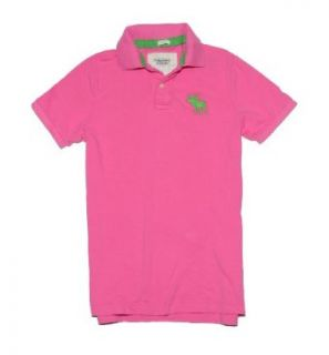 Abercrombie & Fitch Men Muscle Fit Big Moose Logo Polo T