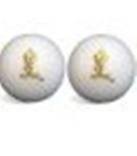 Looney Tunes 2 Golf Ball Set Tweety Bird Sports